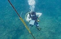 17 - 21/ 9/ 2018: Hội thảo tập huấn giới thiệu về lặn biển khoa học, thu và xử lý mẫu tảo hai roi sống đáy