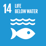 SDG 14: Life below water - Conserve and sustainably use the oceans, seas and marine ressources for sustainable development