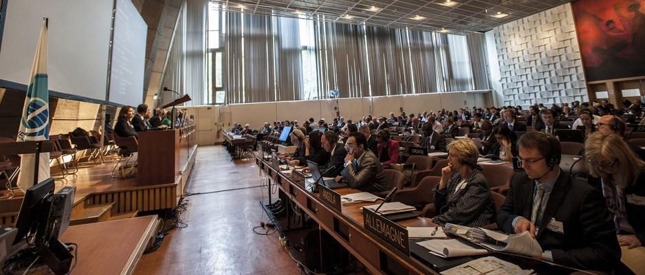 Phiên họp Lần thứ 30 của Hội đồng IOC/UNESCO đã bắt đầu ngày 26-06-2019, tại trụ sở UNESCO Paris, Cộng hòa Pháp, ngày 25 tháng 6 2019